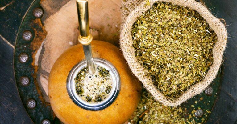 Mate tea (Ilex paraguariensis)